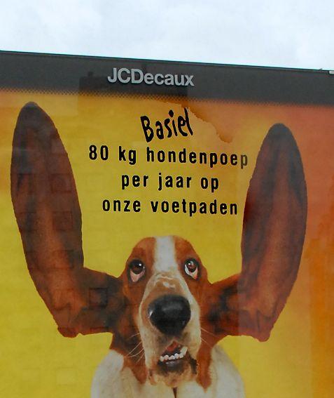 hond bijt staart kapot